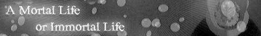 A Mortal Life or Immortal Life