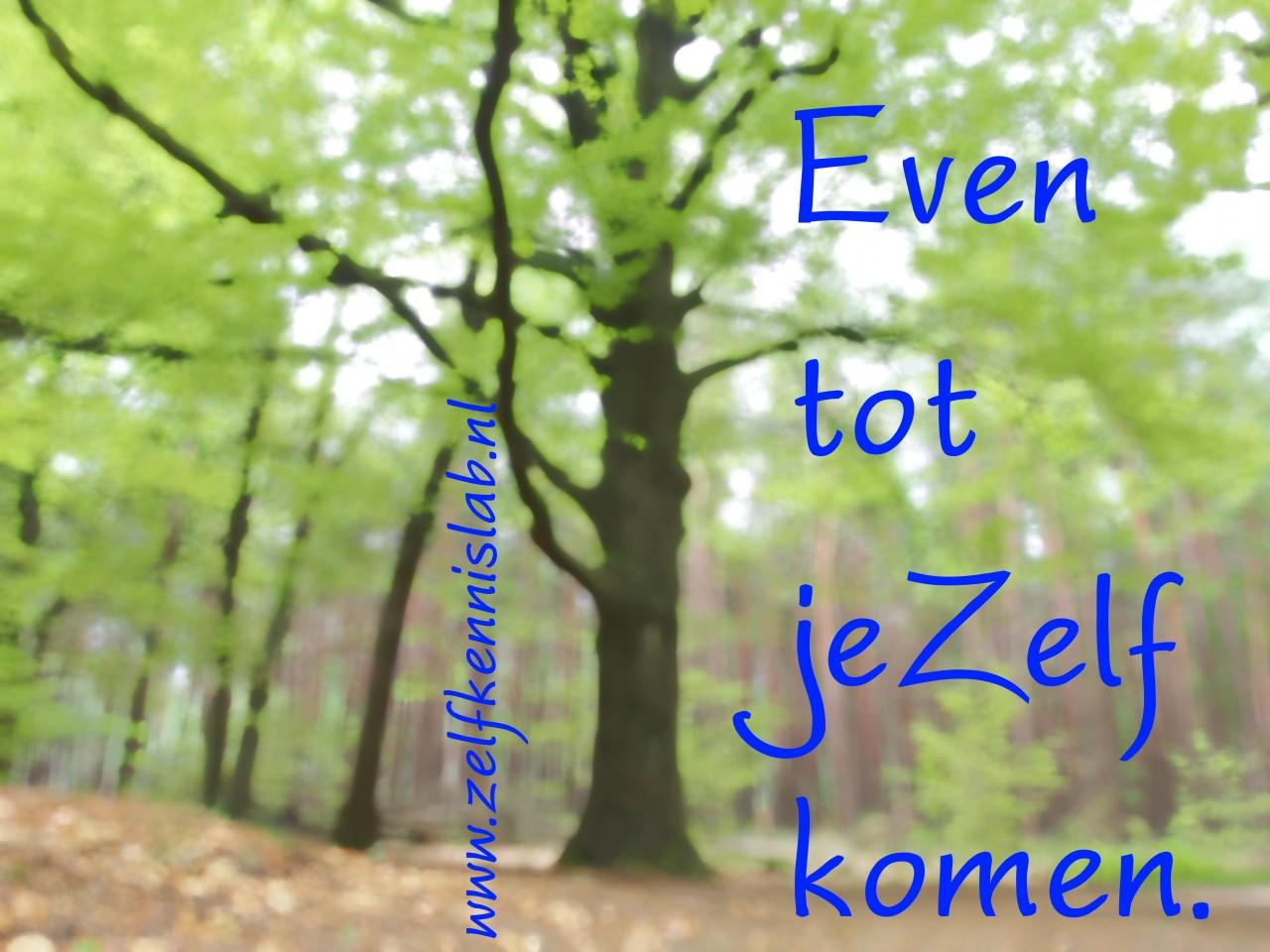 Do it yourself - ZelfkennisLab - Tot jezelf komen