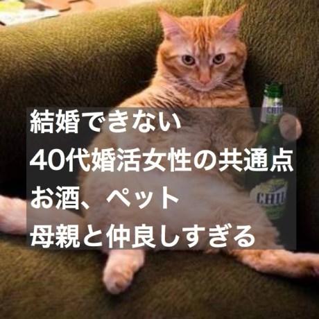 結婚できない40代婚活女性の共通点~お酒・ペット・母親と仲良しすぎる~
