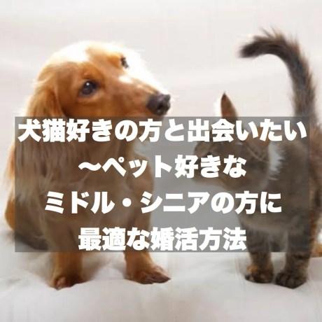 犬猫好きの方と出会いたい~ペット好きなミドル・シニアの方に最適な婚活方法