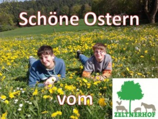 Ostern 2015 Urlaub auf dem Bauernhof Zeltnerhof
