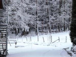 Schnee auf dem Bauernhof, Zeltnerhof, Waldweg