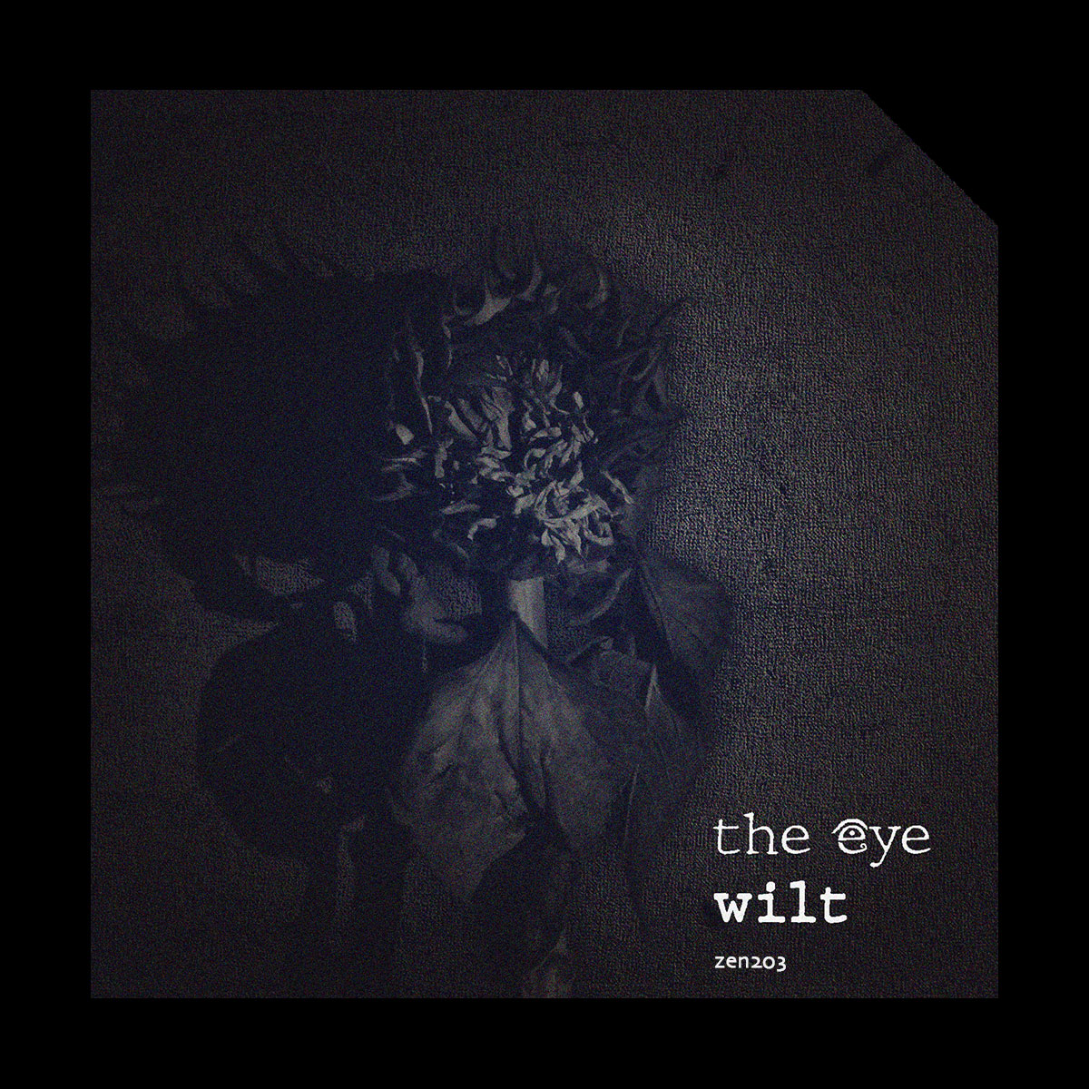 The EyE – Wilt