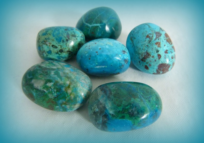 Chrysocolle Image