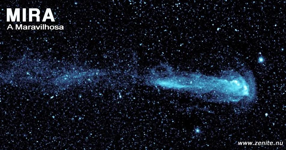 Estrela Mira