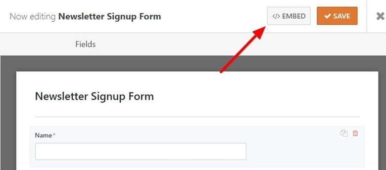 Newsletter Signup with WPForms