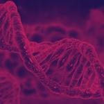 Tips Persiapan Belajar SBMPTN Biologi 6
