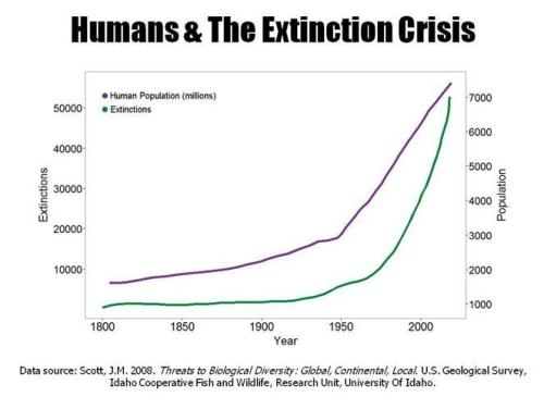 humans-extinction-small