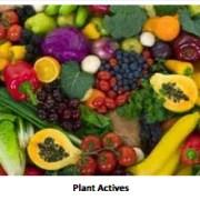 Natural Ingredients in Skincare, Food based skincare