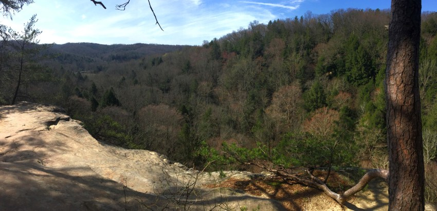 Hiking In Hocking Hills State Park | Logan, OH | USA | Conkle's Hollow Rim Trail