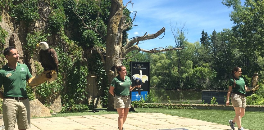 The best things to do in the Twin Cities with kids | Minnesota Zoo | Apple Valley, MN (USA)