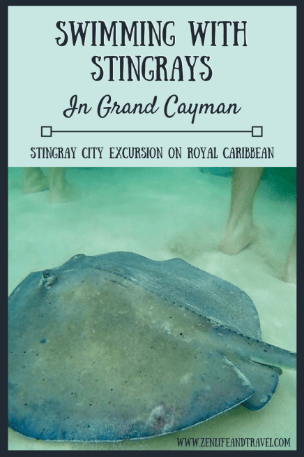 Swimming with stingrays in Grand Cayman | Stingray City Grand Cayman | Royal Caribbean Excursion | Swim With Stingrays | Things To Do In Grand Cayman | #stingraycity #swimmingwithstingrays #grandcayman
