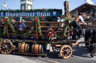 Augustiner Horses delivering fresh kegs at Oktoberfest