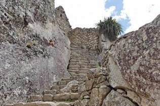 Some stairs at Machu Picchu