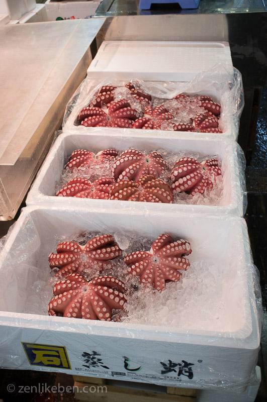 Octopus at the Tokyo Fish Market