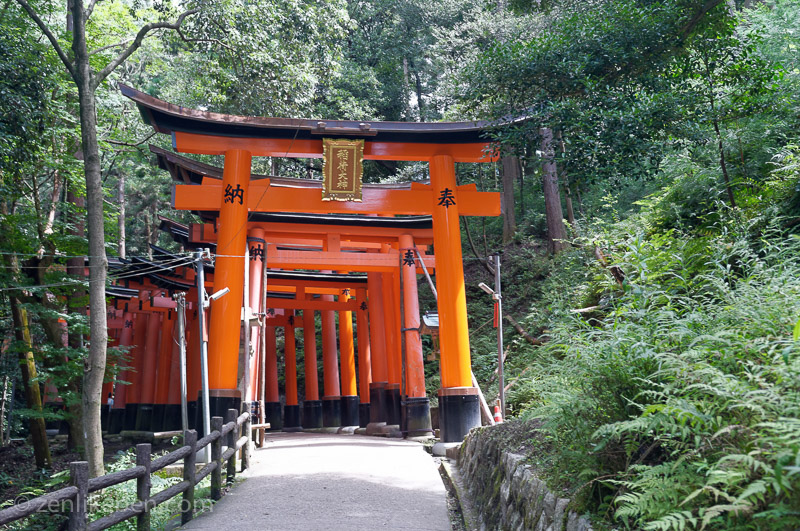 More torii gates at Fushimi Inari-taisha