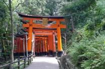 More torii gates at Fushimi Inari-taisha