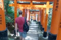 Heading back down through the torri gates from the main shrine at Fushimi Inari-taisha