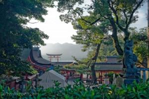 Peaking at the Itsukushima Shrine Torii Gate