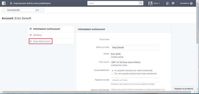 Come Gestire Facebook Ads di un Cliente-informazioni account