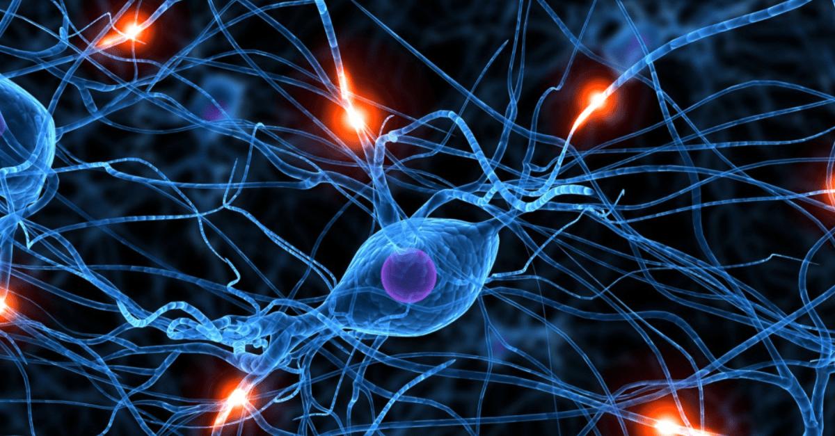 Understanding brainwave frequencies