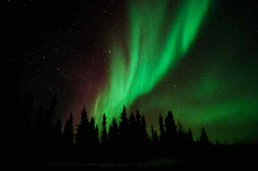 Northern Lights in Yellowknife