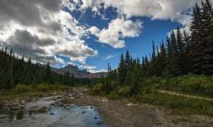 Tonquin Valley and Portal Creek