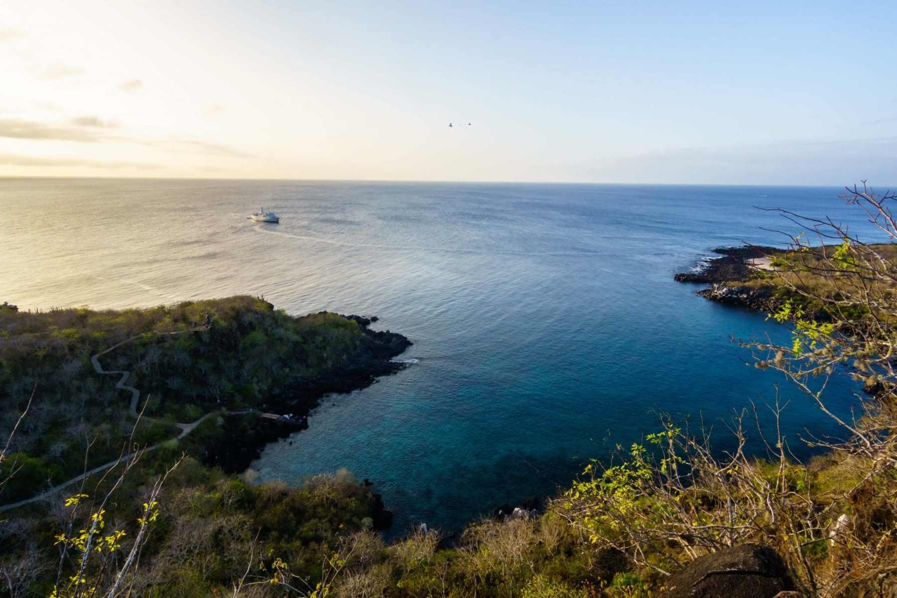 Cruise Boat Docked off Darwin's Cove