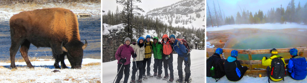 Yellowstone Snowshoe Winter Adventure