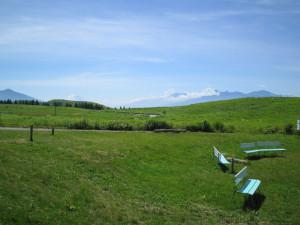 初夏の草原と青空と