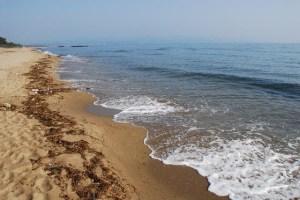 初夏の砂浜と海岸