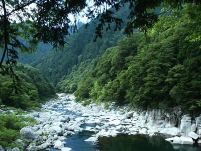 夏の渓流と緑の谷間