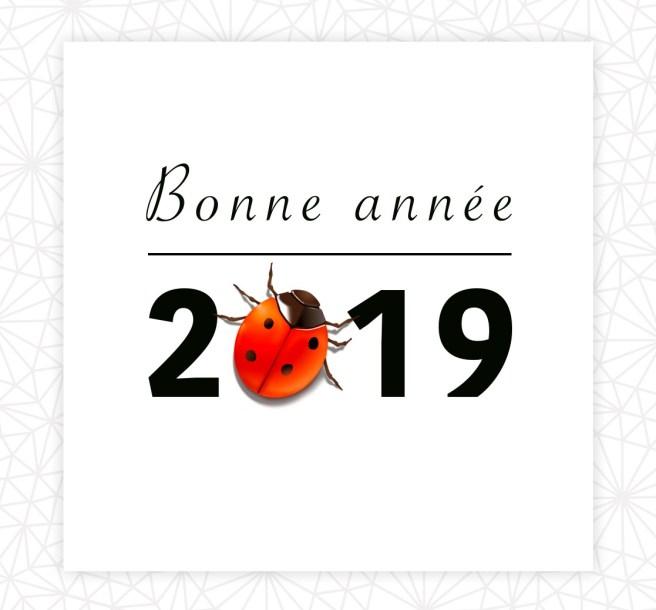 Bonne année zéro déchet