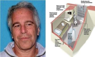 https://i2.wp.com/www.zerohedge.com/s3/files/inline-images/epstein%20cell.jpg?resize=331%2C201&ssl=1