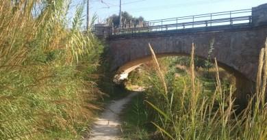 Due giri nel fiume Montone