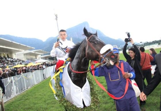 Cavalo vencedo My Cherie Amour