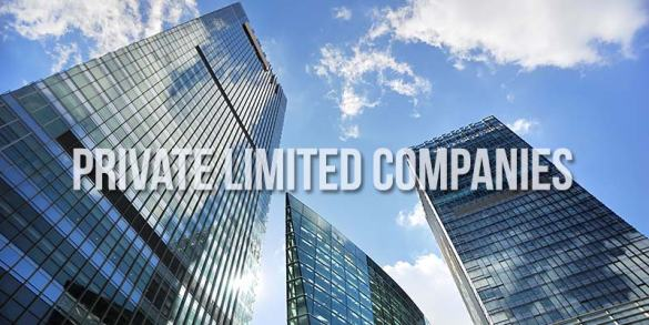 Why Should You Register Your Start Up as A Private Limited Company     Private Limited Company