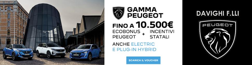Banner Concessionaria Peugeot Davighi