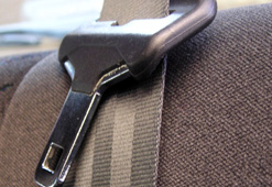 Do you agree with it be illegal to not wear your seatbelt?