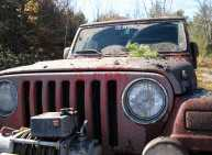 Jeep Truck Pictures