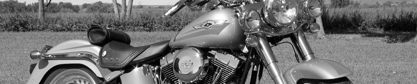 Harley Davidson Stats