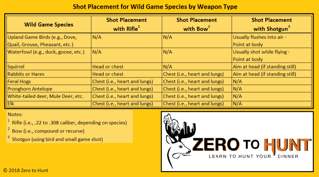 learn to hunt shot placement
