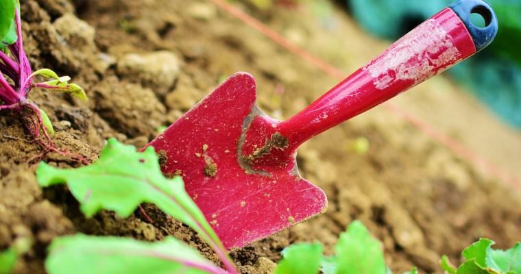 NC Ag Biotech Summit- Soil Health