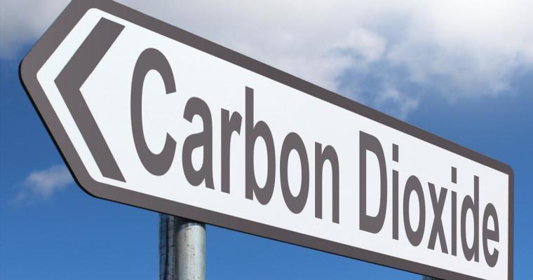 Carbon Fees