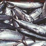 Overfishing endangers the environment and humans.