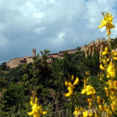 Castelnuovo dell'Abate