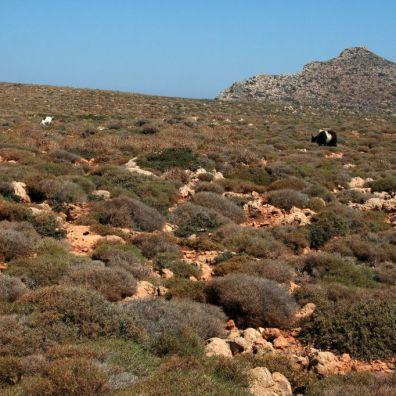 Il sentiero per raggiungere Balos