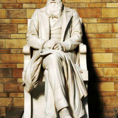 Museum of Natural Science - Charles Darwin