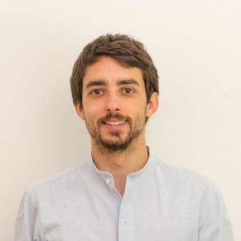 Luigi F. Cerfeda