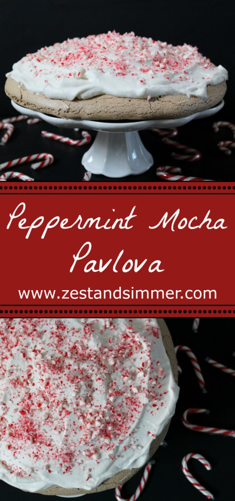 Peppermint Mocha Pavlova - What better way to celebrate the holiday season than with a beautiful and festive dessert? Chocolate mocha meringue is topped with plenty of whipped cream and crushed candy canes for a minty crunch. It's like the seasonal coffee favourite in delicious dessert form!